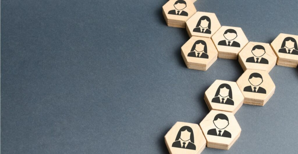 organizaciones, evolución organizacional